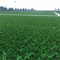常州泰辉橡塑新材料有限公司主营草坪弹性缓冲垫,草坪弹性垫层,草坪减震垫,草坪填充颗粒等材料